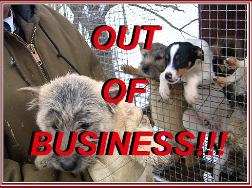 PUPPY MILLS, Are you For Or Against?