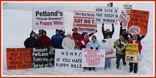 Milwaukee Pet Store Protest Group, Petland Pet Store, 10 January 2009