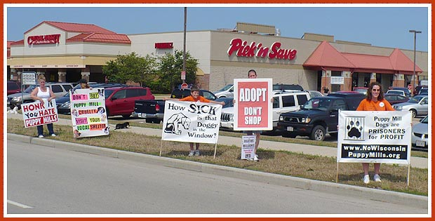 Milwaukee Pet Store Protest Group at Petland. August 2008