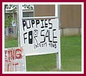 The signs are all over the place -- but exactly what IS a PuppyMill?