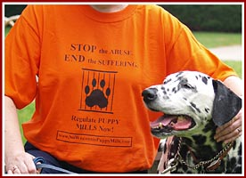 "Order one of our distinctive ""Regulate Puppy Mills"" t-shirts from our partners at the Clark County Humane Society."